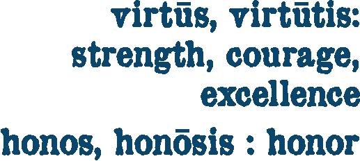 What We Do Virtonos Capital
