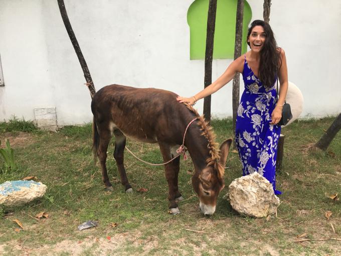 Kissters-tulum-donkey