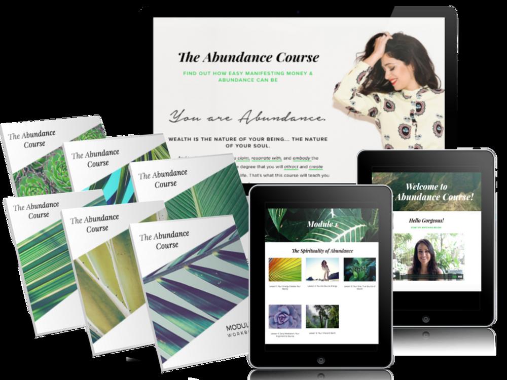 The Abundance Course.png