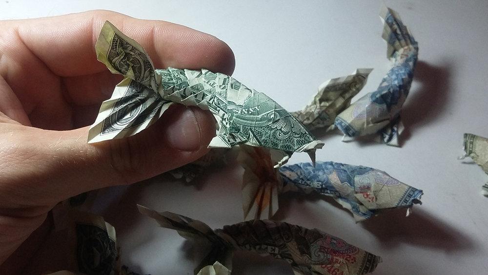 Egy kész archetípus, Won Park féle dollárkoi.
