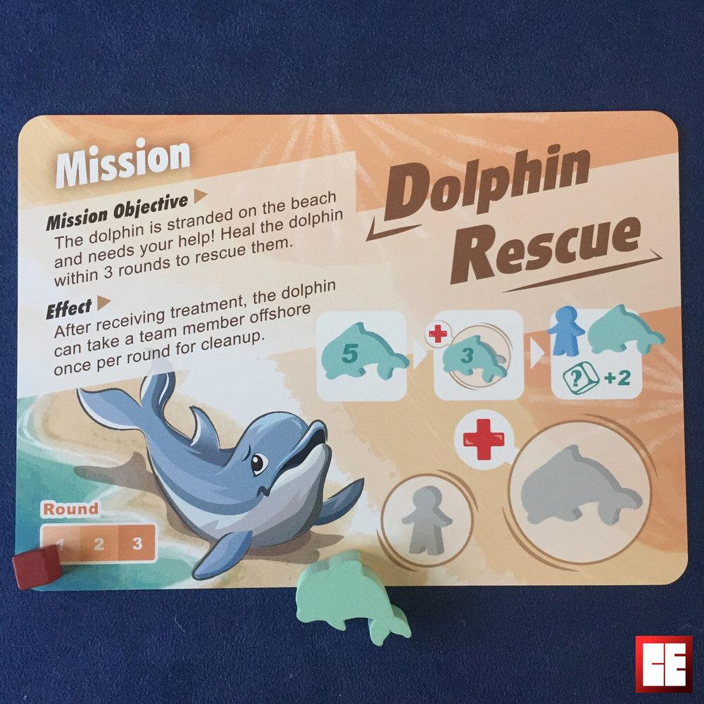 mission 1 dolphin2.jpg