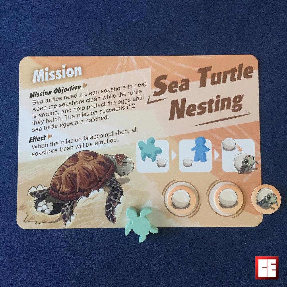 mission 3 turtle2.jpg
