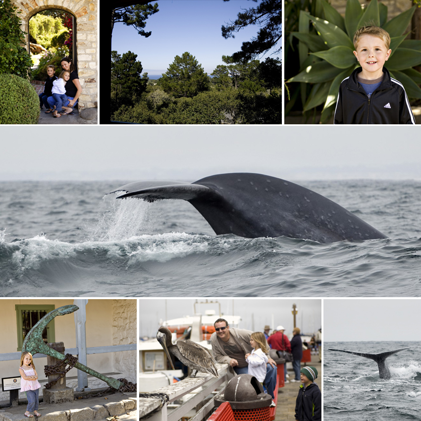 Family Photography in Monterey, CA
