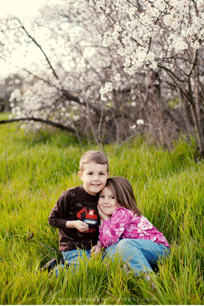 sacramento cherry blossom tree childrens photography