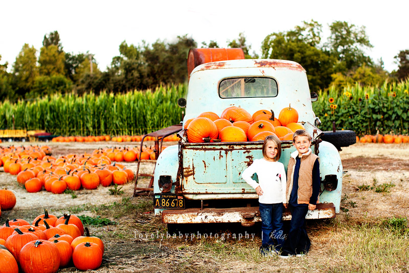 fall pumpkin patch children's photography sacramento