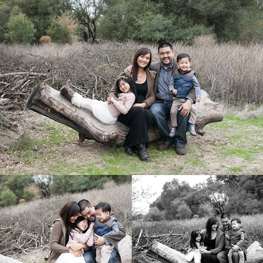 01 a family sacramento portrait session