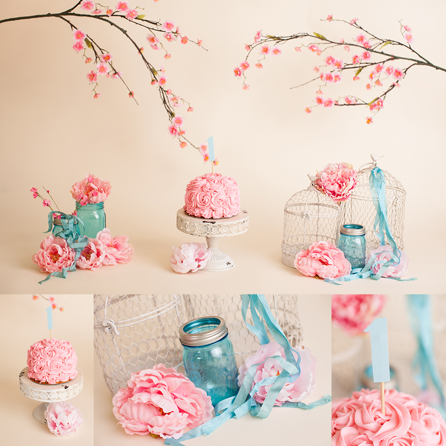 cake smash pink and teal photography