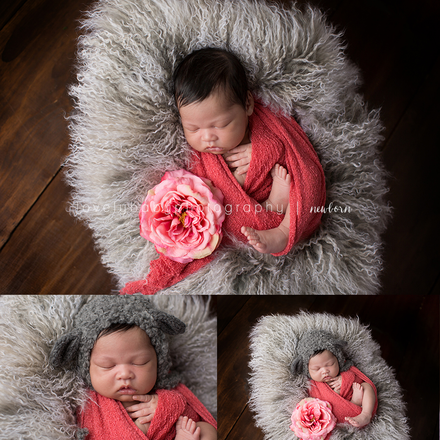 04 del mar newborn portrait studio
