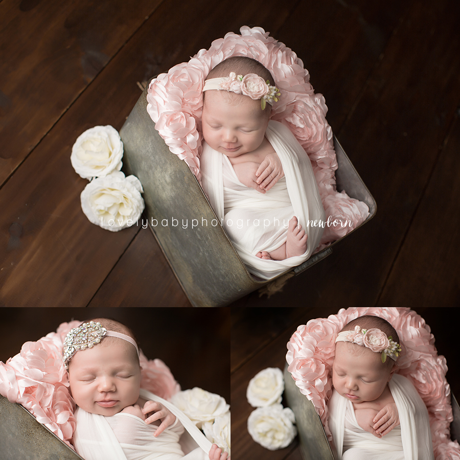 4 carlsbad north county newborn photographer