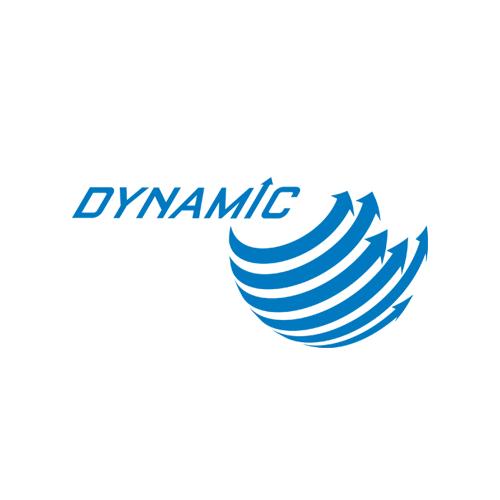 Dynamic-SS.png