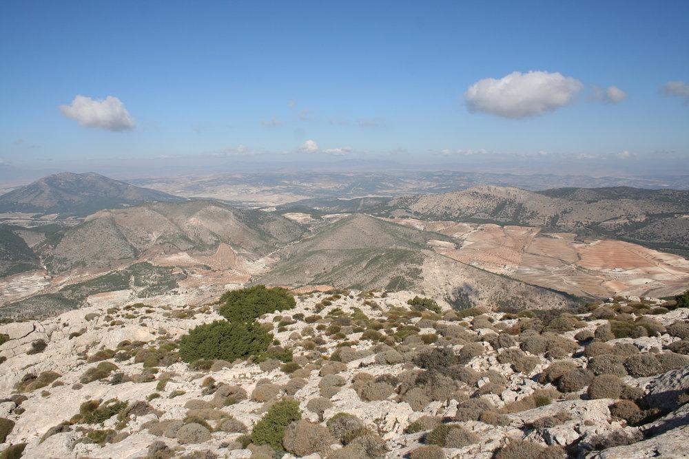 Vista desde la cima de Sierra Gigante hacia Los Gázquez. El cortijo se encuentra al fondo del cortafuegos que se puede ver en el centro de la fotografía.