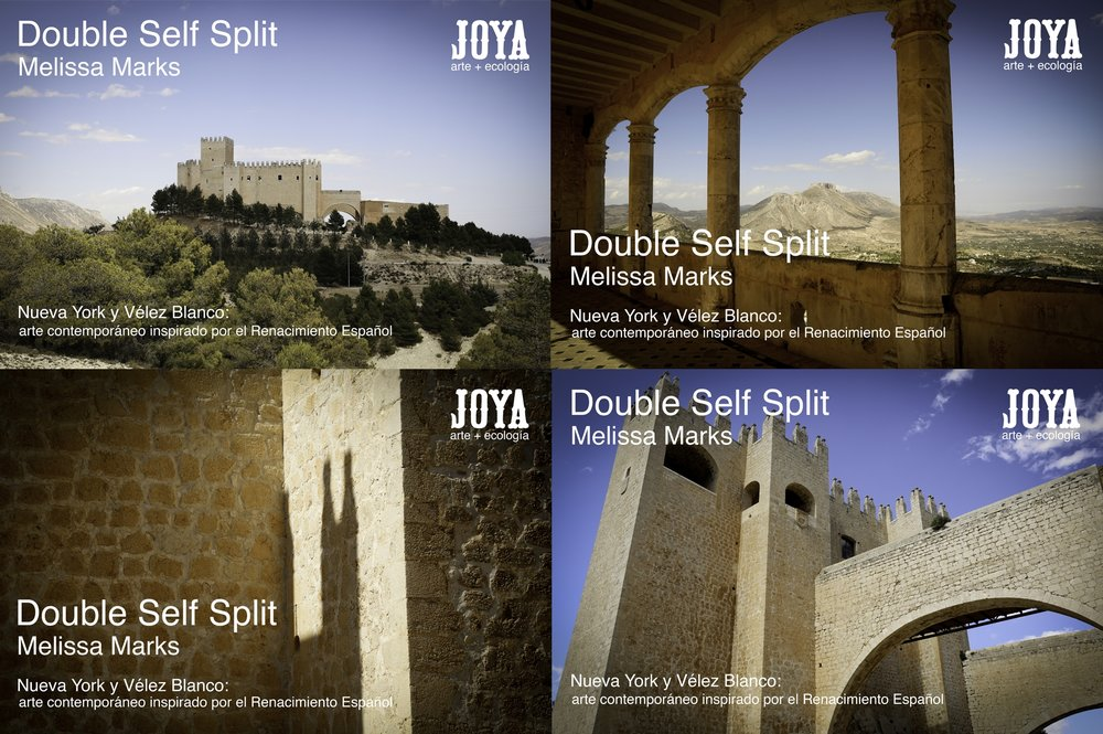 Joya: arte + ecología publicity for Double Self Split...