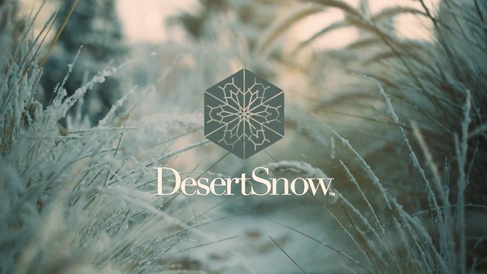 Desert Snow - Yukegassen