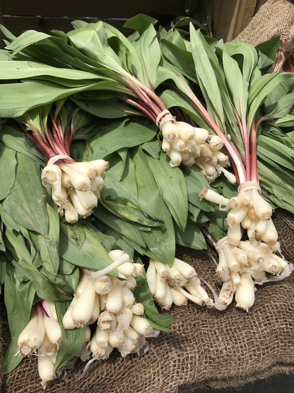 ramps-at-market-e1495121781104.jpg