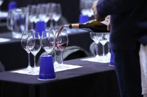 Exploring Whole Cluster Fermentation in Pinot Noir Seminar