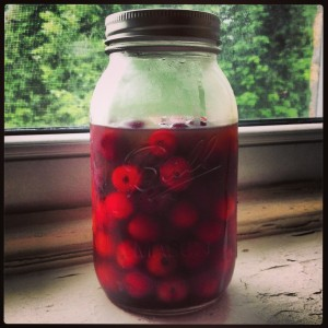 cocktail cherries