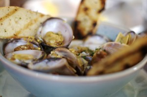 Clams courtesy nfnitloop