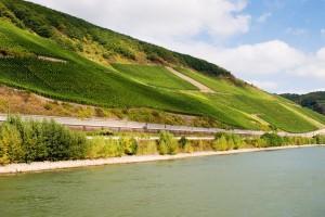 Rhine Valley, photo by Richard Cassan