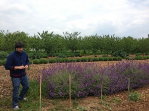 Laurent Cazottes in his orchard in Tarn, photo by Nicolas Palazzi.
