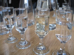 gin tasting, photo by Ron Dollete