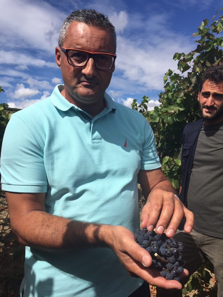 Winemaker Lucio Matricardi displays a bunch of nearly ripened pinot noir grapes with vineyard manager Daniele.