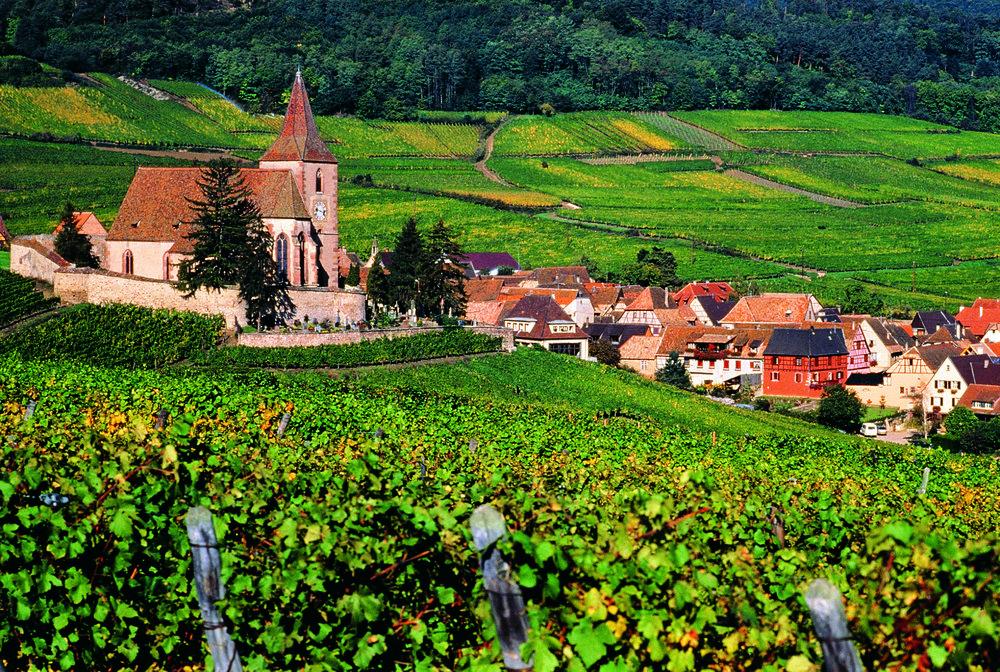 Alsace Rosacker Grand Cru_Riquewihr, Copyright ZVARDON-Conseil Vins Alsace