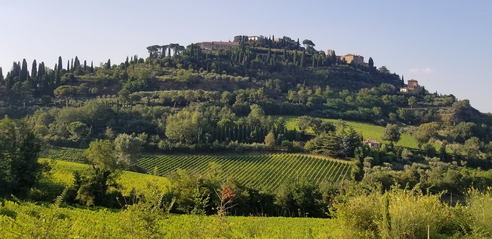 Montepulciano, photo by Kelly Magyarics