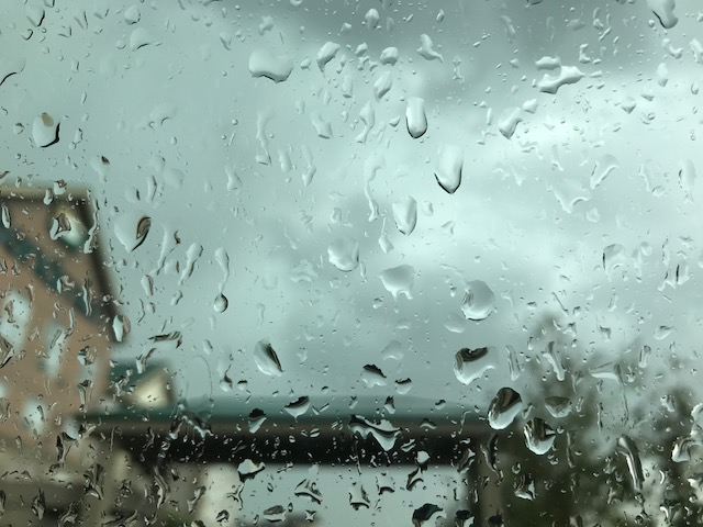 Rain Droplets on Window.jpg