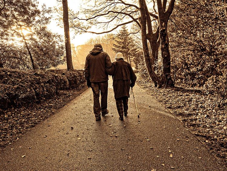 elderly-assistance-progtram-block.jpg