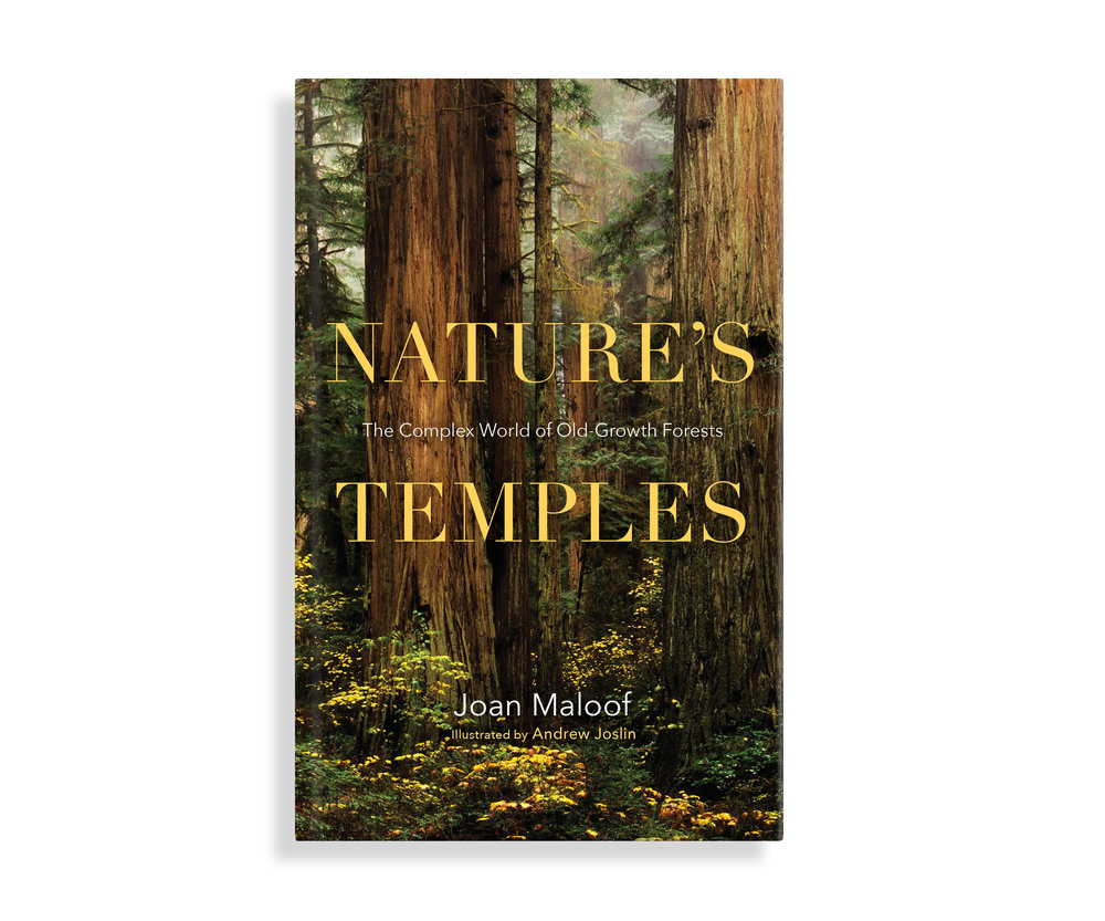 book_naturestemples_cover_001.jpg