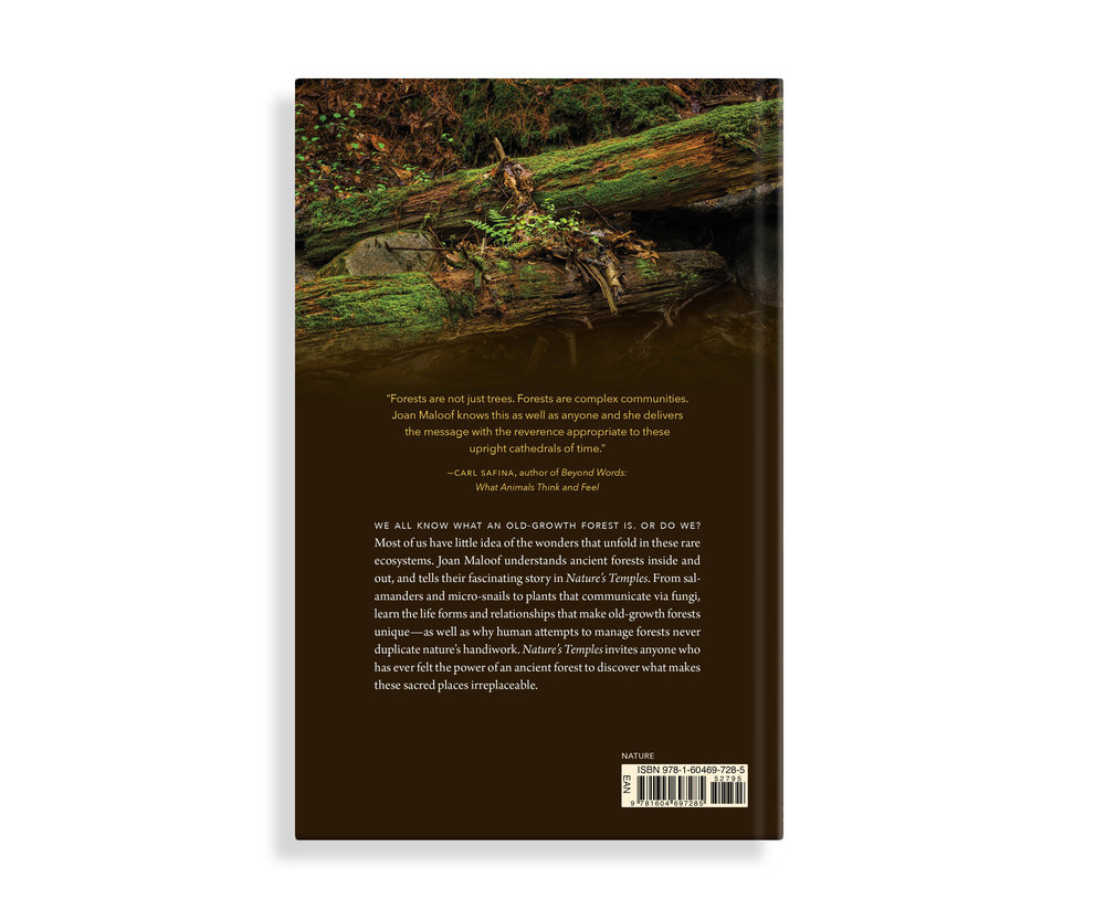 book_naturestemples_cover_002.jpg