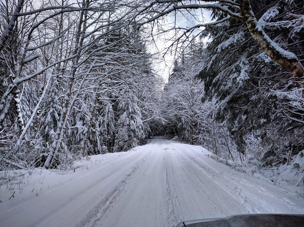 Tinkham Road in the Winter