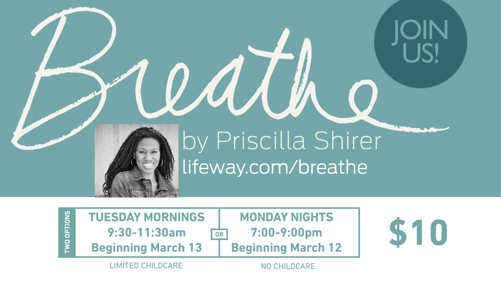 womensbiblestudy.breathe-01.png