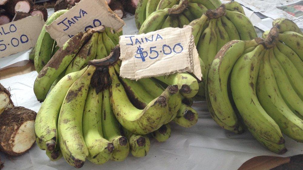 Jaina, or bananas, at the Suva Market. Photo Credit: Giulia Anderson