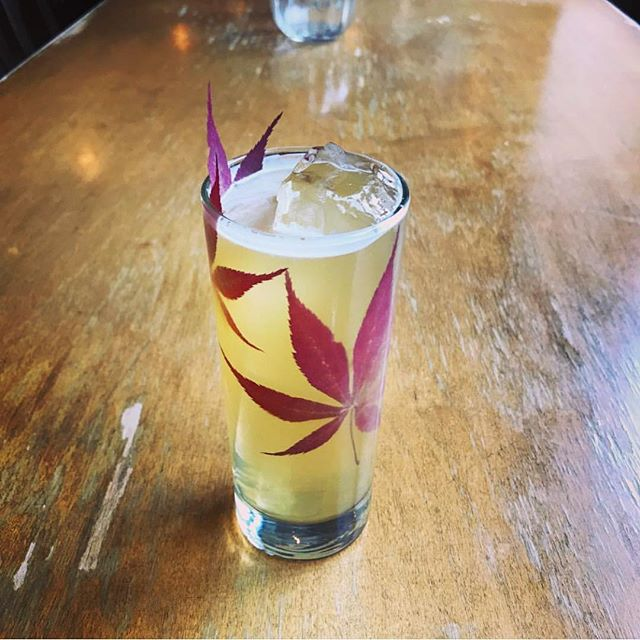 AUTUMN BUCK | Glenfiddich Fire & Cane, Pimm's Pear, Chai, Lemon and Fever Tree Giner Beer . . 📷: @steakbonestacey #dantelovesyou #drinkoftheday #photooftheday #cocktail #cocktailbar #drink #thirst #thirsty #draaaaanks #bar #happyhour #aperitivohour #aperitivo #nyc #newyorkcity #littleitaly