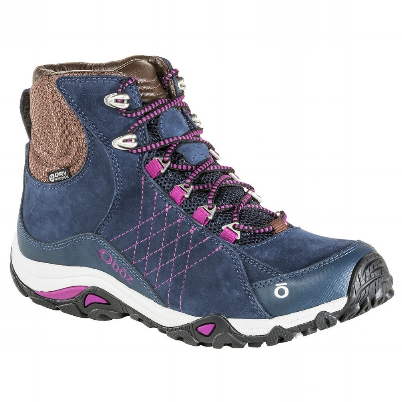 Oboz Women's Sapphire Mid Waterproof Hiking Boot - Huckleberry (PC: Ems.com)