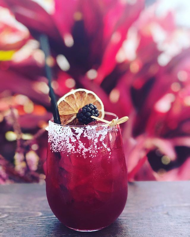 blackberry marg.jpg