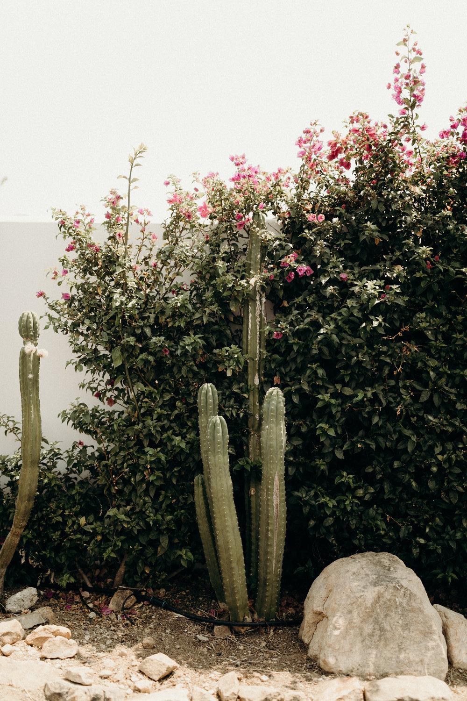 B + M in Malibu California - Victoria Bonvicini Photography-34.jpg
