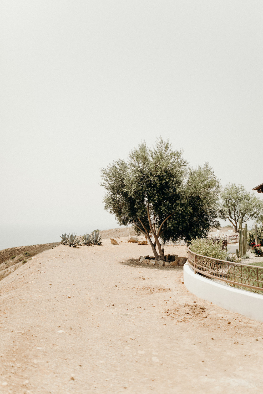 B + M in Malibu California - Victoria Bonvicini Photography-39.jpg