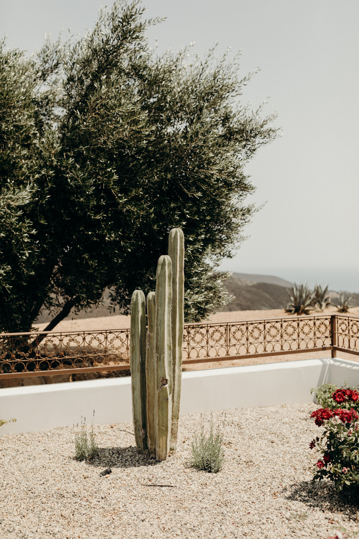 B + M in Malibu California - Victoria Bonvicini Photography-112.jpg