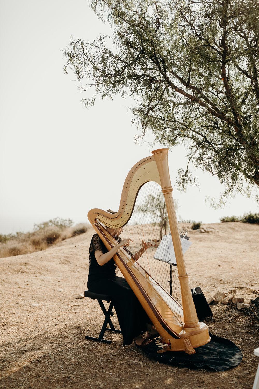 B + M in Malibu California - Victoria Bonvicini Photography-466.jpg