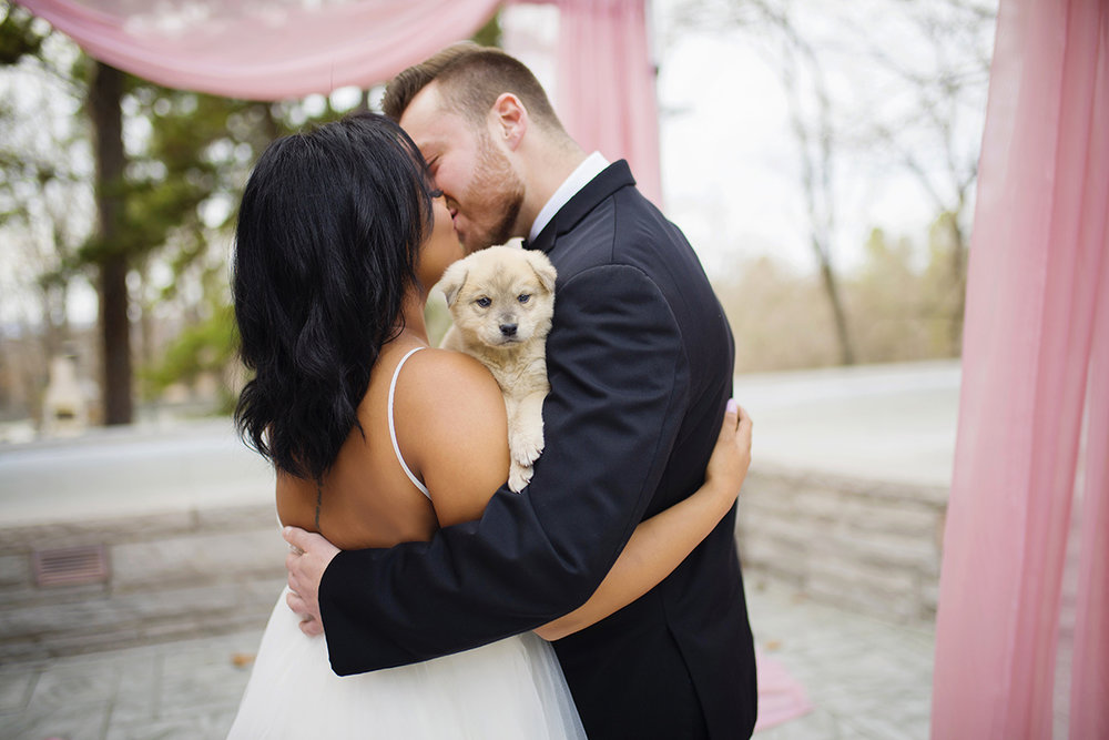 Grace Starr Photography     Puppies at weddings.. yes!