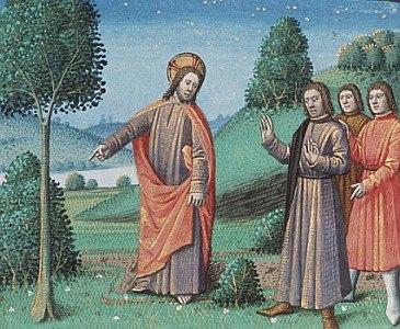 Jesus and the Fig Tree.jpg