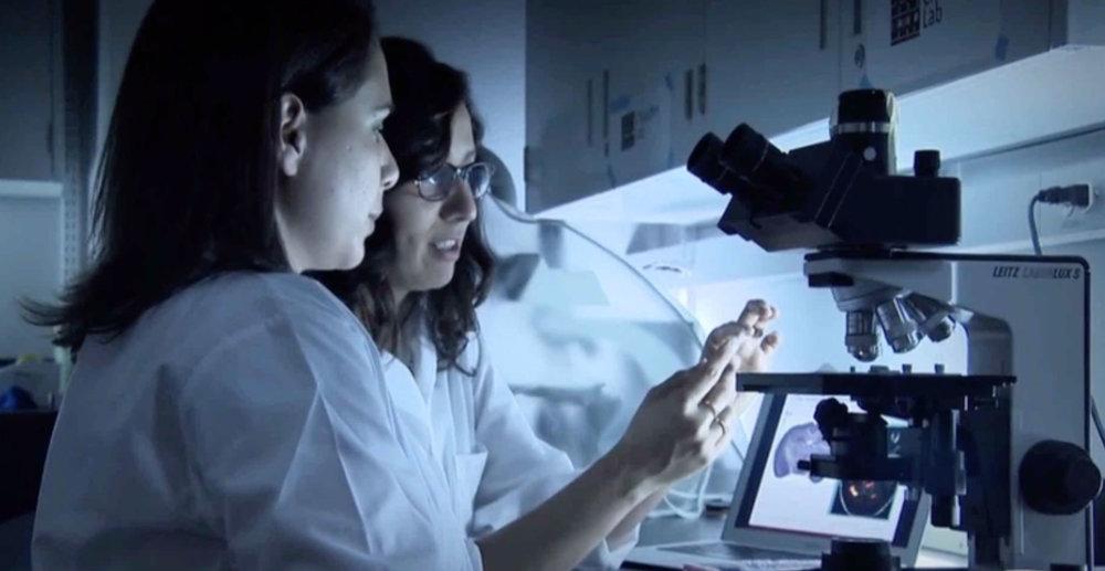 js-nc-microscope.jpg