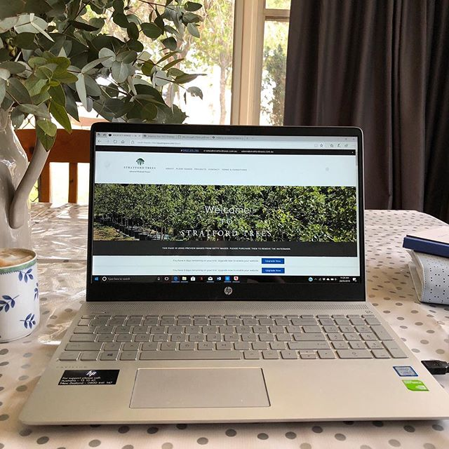Here is a sneak peak of what is about to be launched! Yes, that's right, a NEW WEBSITE!  If at all you have any queries while we have no website running please contact us via email at sales@stratfordtrees.com.au or admin@stratfordtrees.com.au!  #stratfordtreesnursery #wholesalenursery #deciduous #ornamental #native #advancedtrees #semimaturetrees #newwebsite