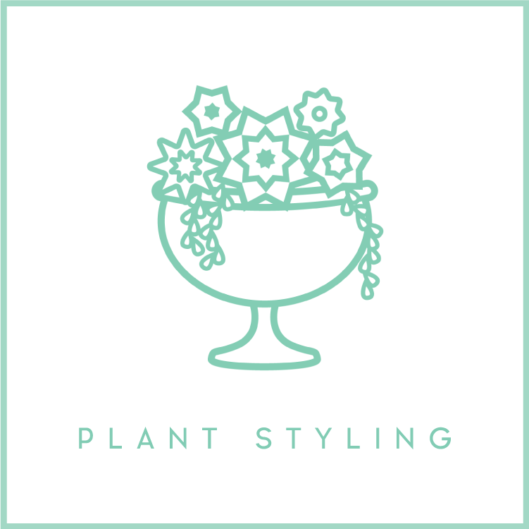 plantstyling2.png