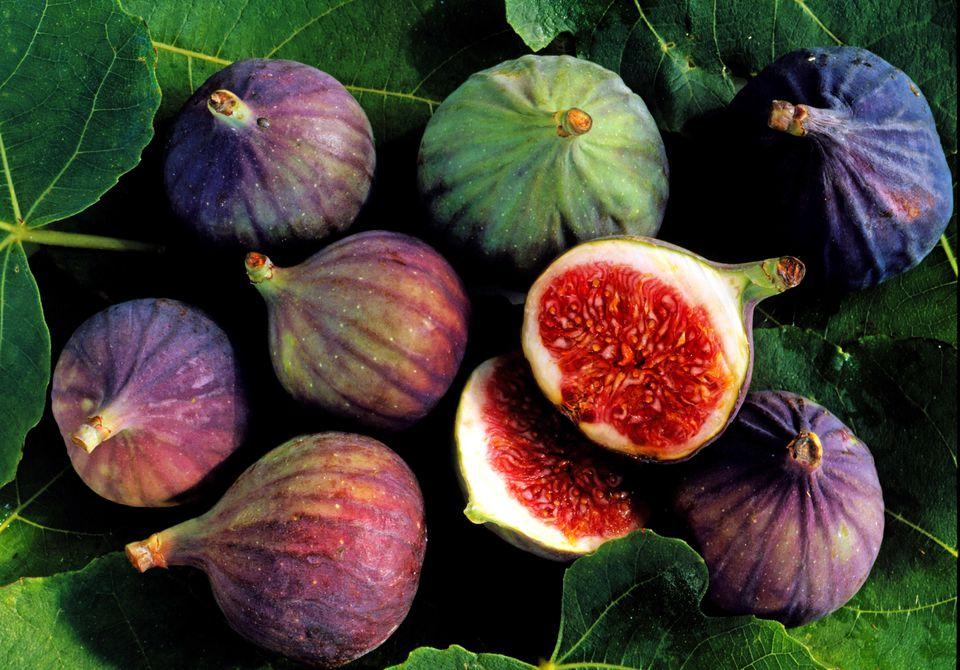 Figs 8.jpg