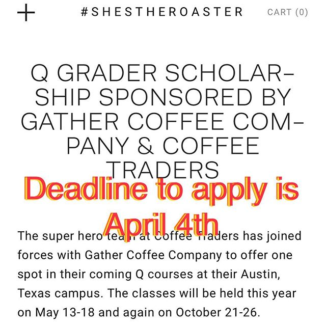 What are you waiting for??? Get your application in! ✨✍️🚀✨ #shestheroaster