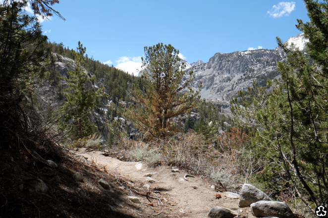 ape-is-dapper-backpacking-bishop-inyo-national-forest-1.jpg