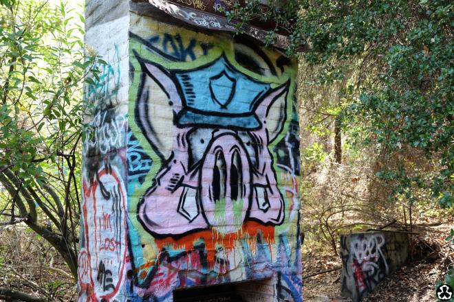 ape-is-dapper-los-angeles-nazi-yards-graffiti-11.jpg